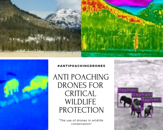 ANTI POACHING DRONES FOR CRITICAL WILDLIFE PROTECTION SOLUTION